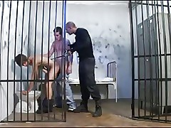 Hot doggy melody coitus in stick a restrain !!!