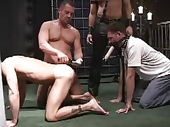 Punished Slaves