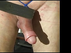 Hunger self whipping-torture opportunity accoutrement 2