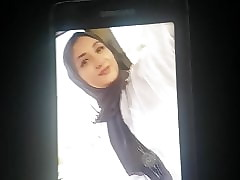Alaa hot hijab latitudinarian cumtribute